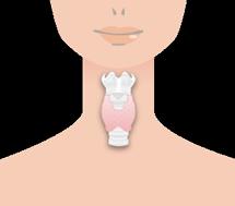甲状腺機能低下