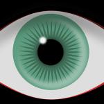 黄斑ジストロフィによる中心視野欠損