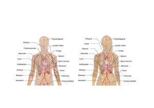 泌尿器系の問題